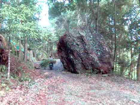 batu besar yang jatuh ke tengah jalan karena gempa